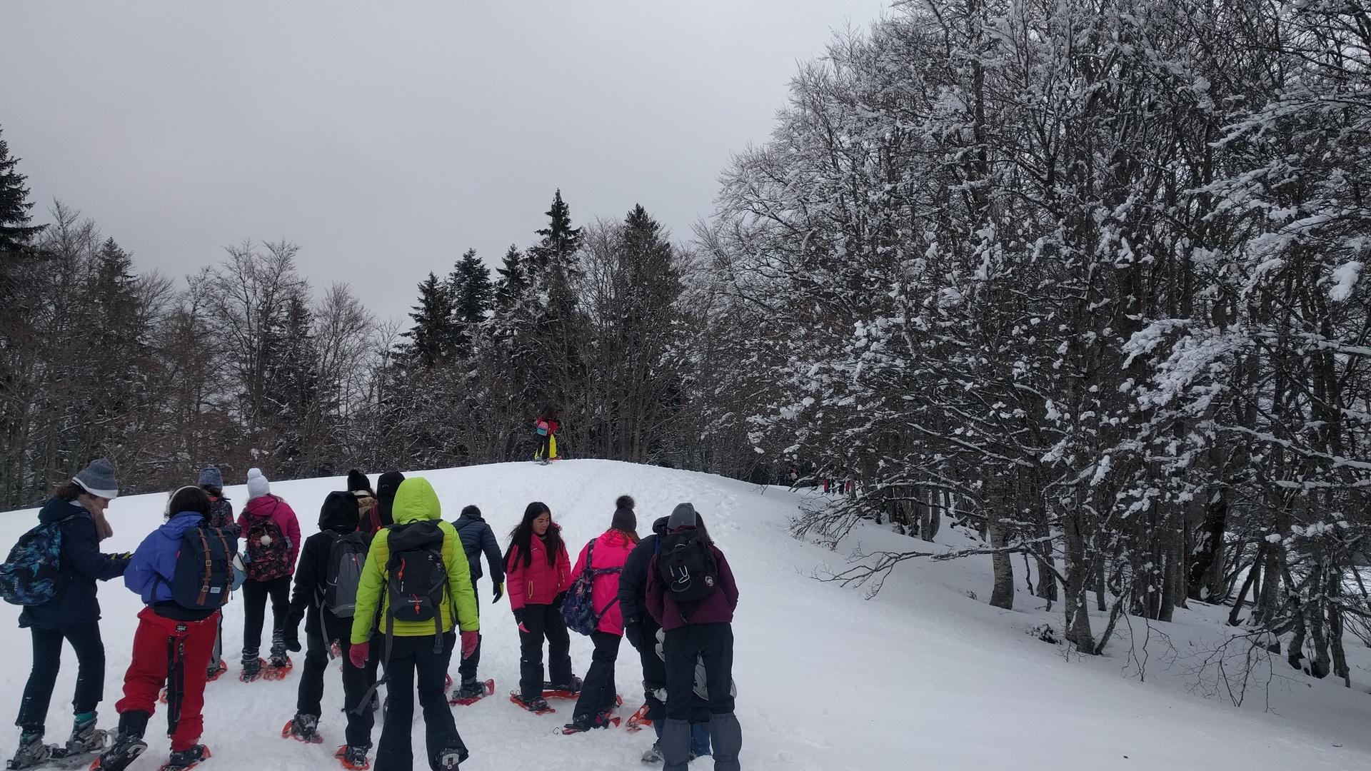 20mar-excursin-con-raquetas-de-nieve-con-los-franceses-en-el-plateau-de-retord02